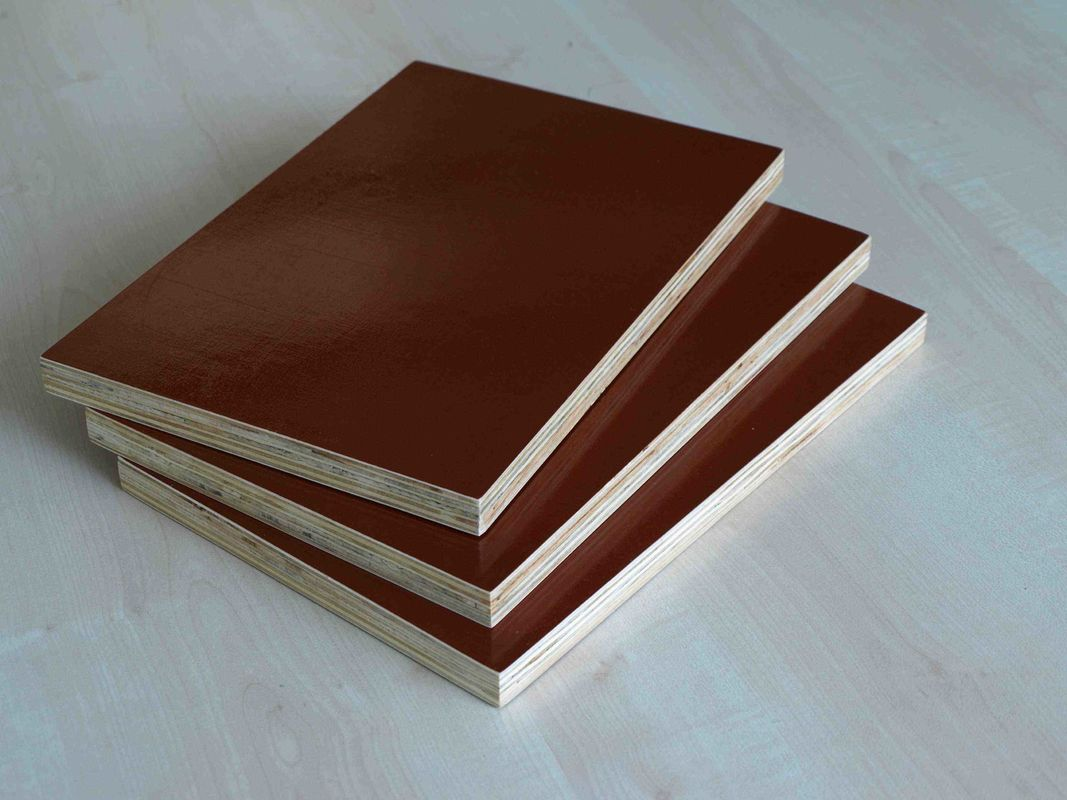 Flexibility WBP Glue Oversized Plywood Sheets / Poplar Core Plywood Project Panel